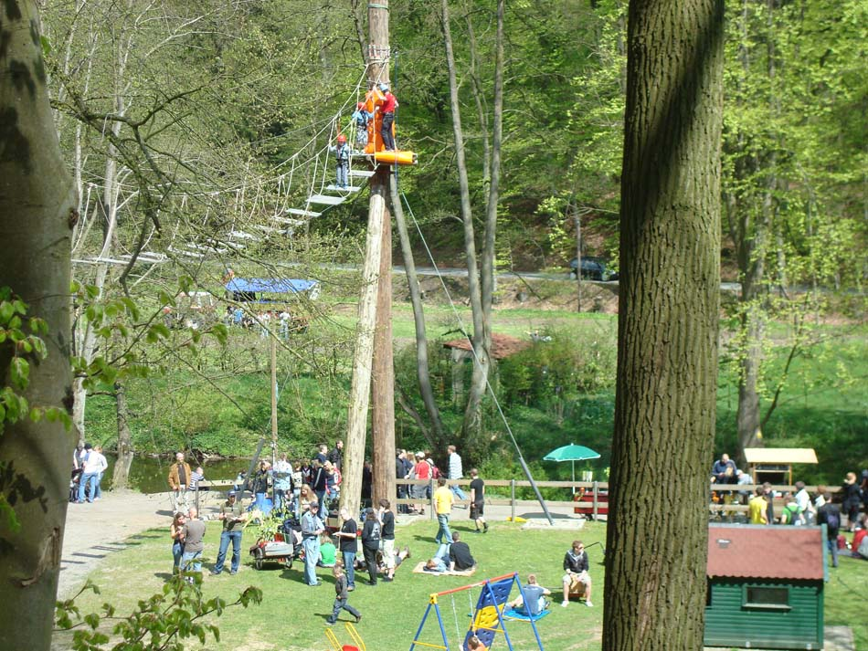 Sportart Checkup: Klettern im Kletterwald