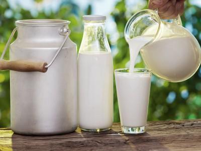 Milch macht krank – ist Milch wirklich ungesund?