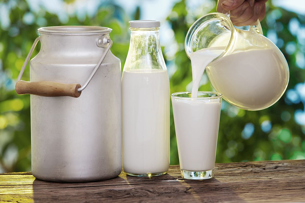 Pouring milk in the glass on the background of nature.