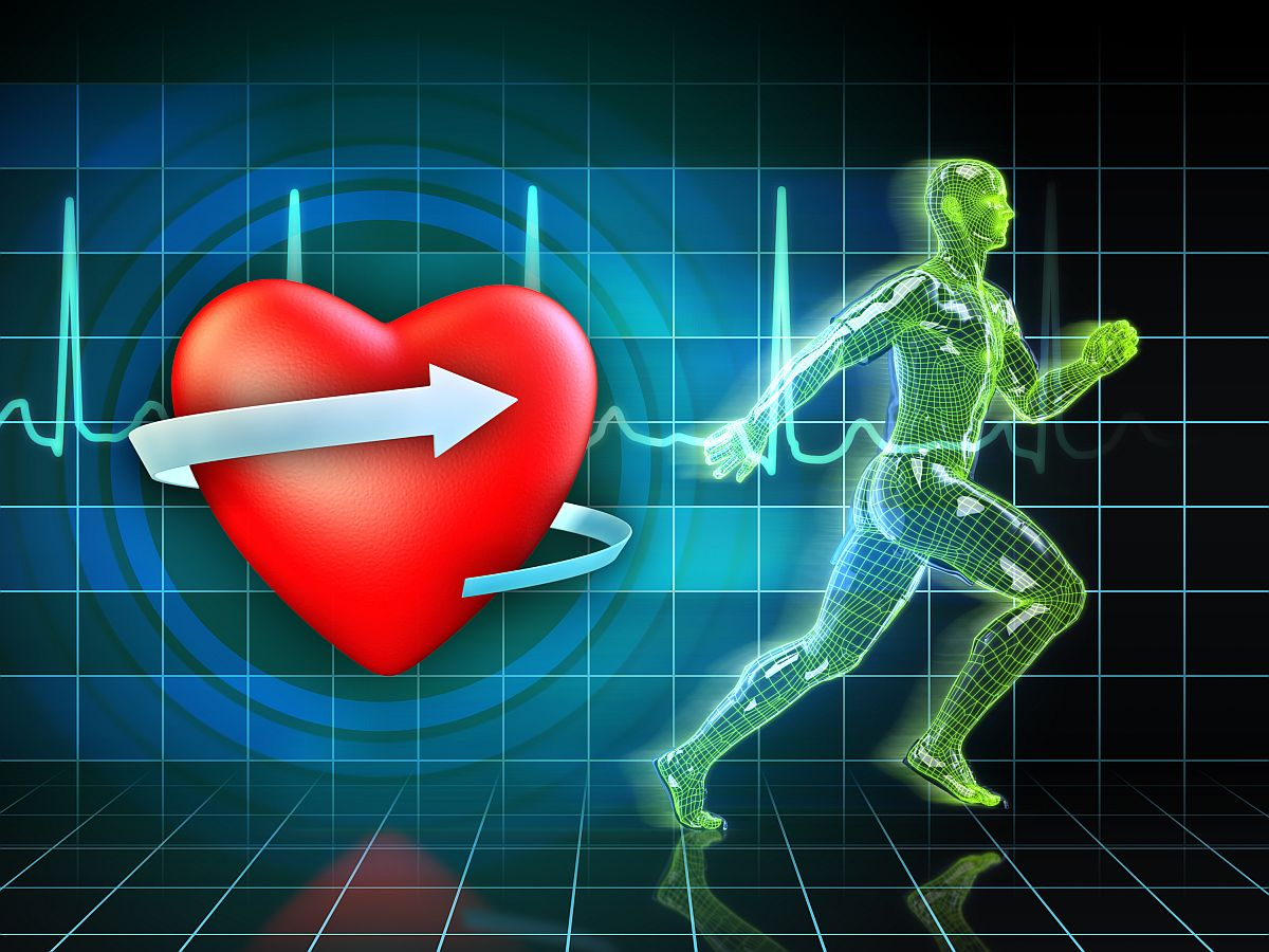 Cardio exercise increases the heart's health. Digital illustrati