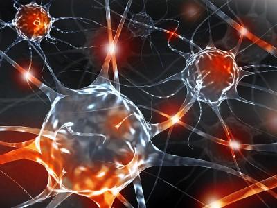 Sport und Gehirn – Macht Sport schlau?