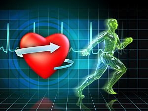 Cardio exercise increases the heart's health. Digital illustration.