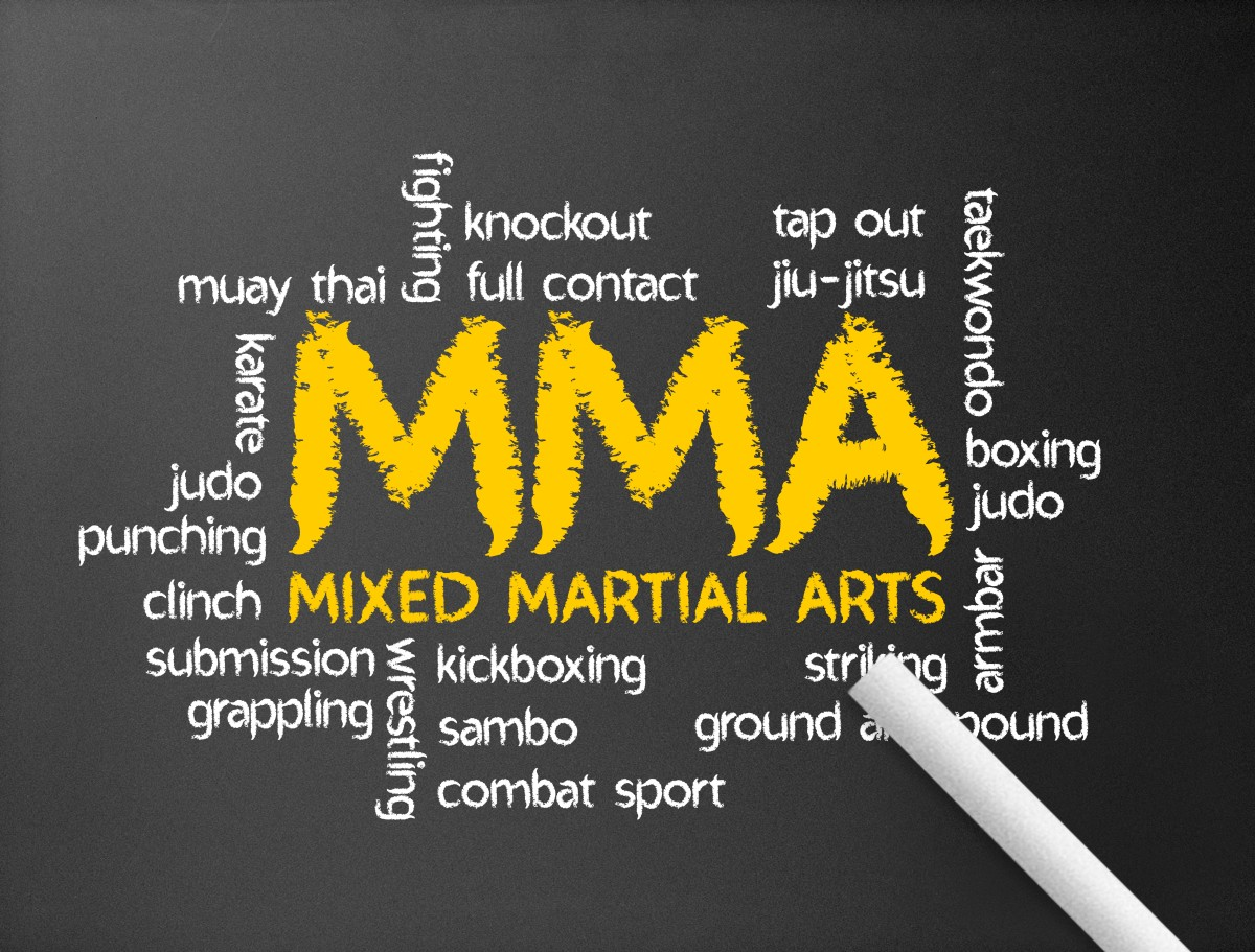 """essay about mixed martial arts Advantages and disadvantages of mixed martial arts (mma) custom essay [meteor_slideshow slideshow=""""arp1″] this writing should be a revised, personal reflective."""