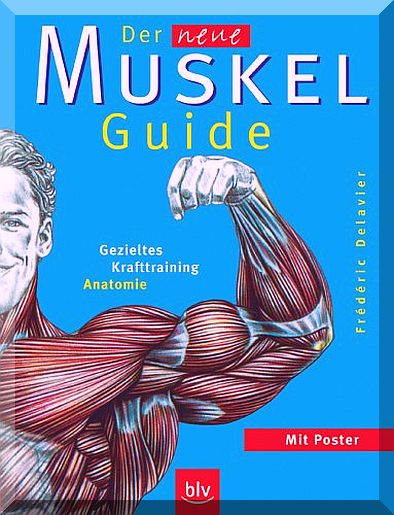muskel-guide