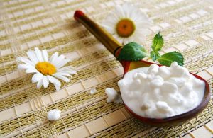Wooden Spoon With Cottage Cheese